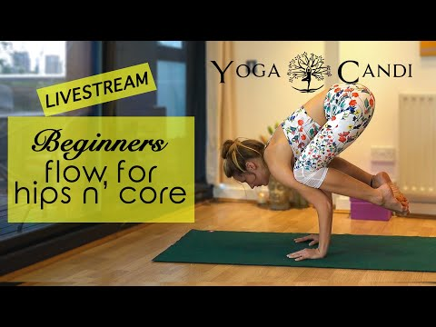 live beginner yoga for hips  core  crow pose practice