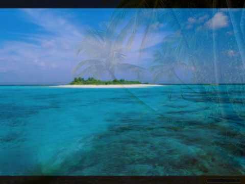 Paul Van Dyk feat. Second Sun - Crush (Pvd Remix)