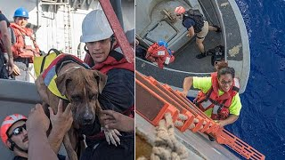 2 women and their dogs are rescued after being lost at sea for 5 months