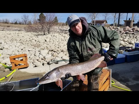 Big Pike Tagging - NDGNF - 04-14-2020