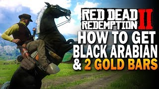 How To Get The Black Arabian & 2 Gold Bars! Red Dead Redemption 2 Horses [RDR2]