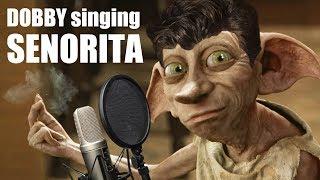Dobby singing Señorita