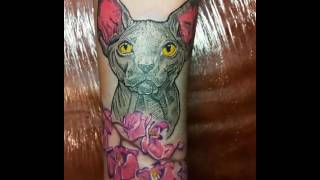 Татуировка кот.