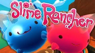 ROCKY KITTENS?! | Slime Rancher