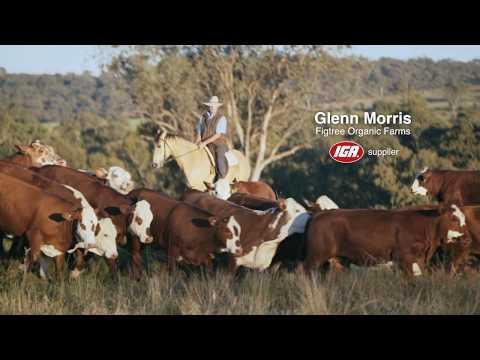 Glenn Morris, Fig Tree Organic Farm   IGA Supplier [30]