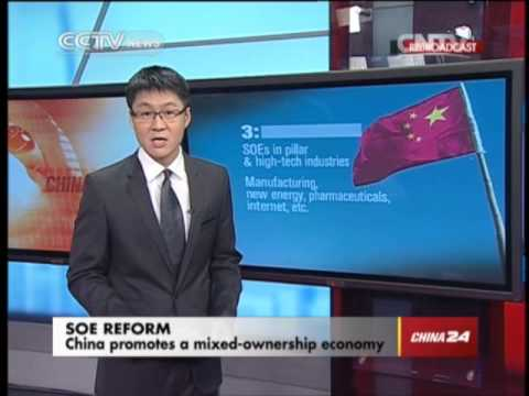 China promotes a mixed ownership economy
