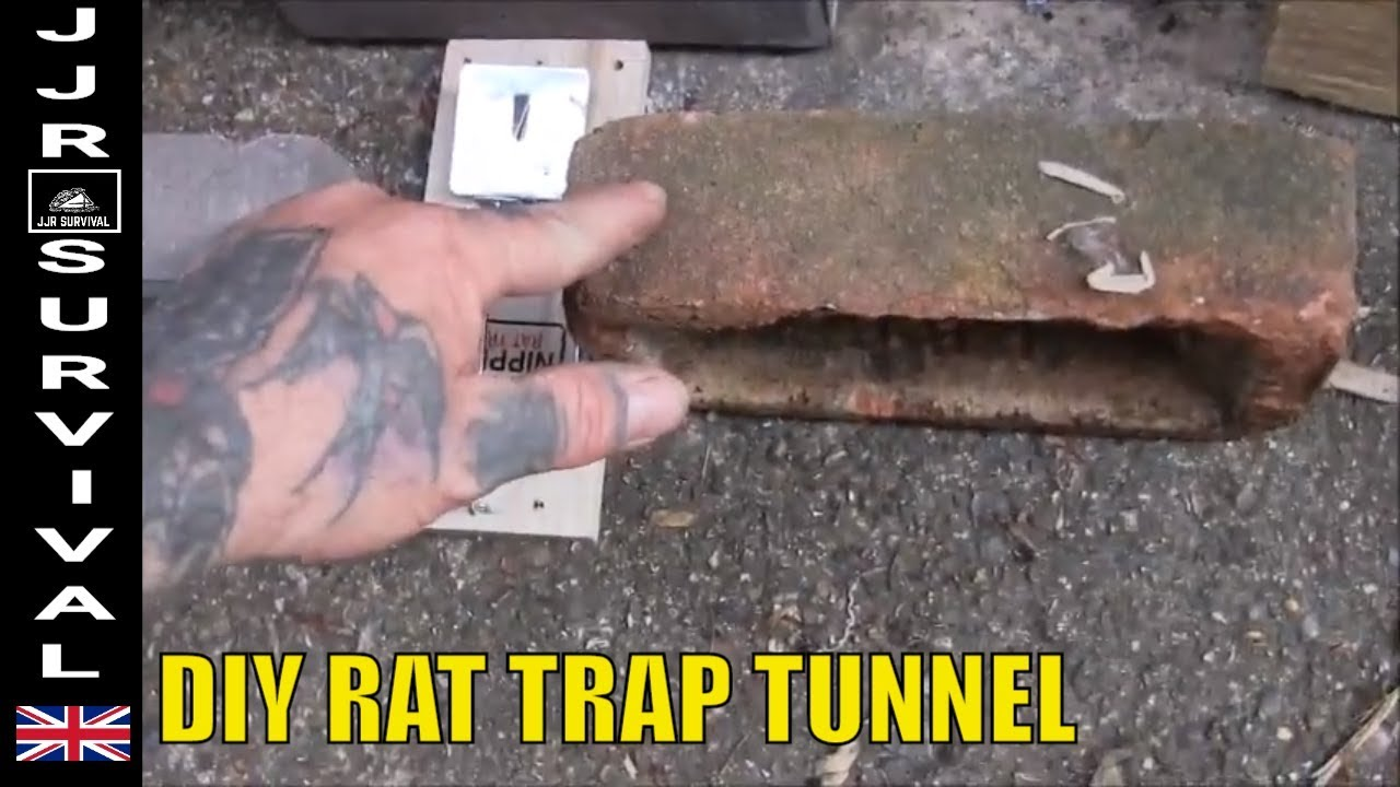 How To Make A Rat Trap Tunnel
