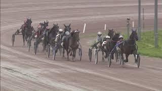 Vidéo de la course PMU PRIX LEOSCHALKOORT.NL