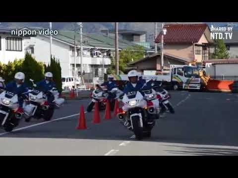 Police japonaise  atsiunte Gintautas