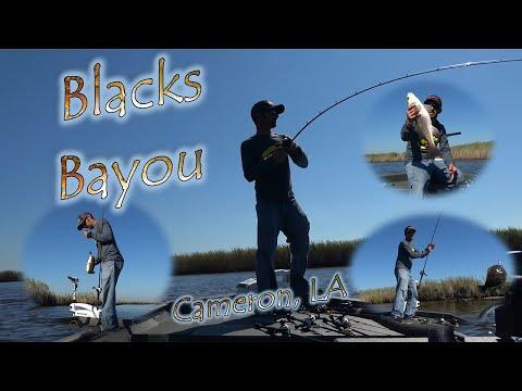 Blacks Bayou 10-28-18