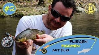 Fliegenfischen für Anfänger | Fly Fishing for brown trout | English subtitles