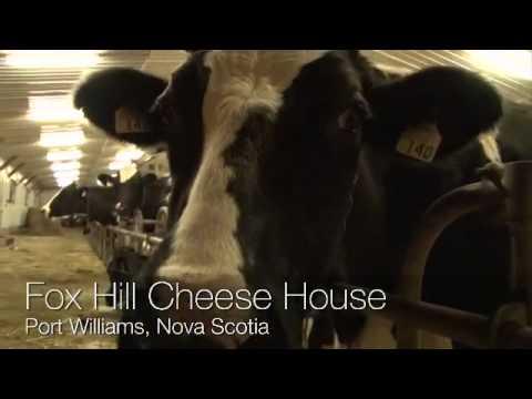 Fox Hill Cheese House in Port Williams - Nova Scotia, Canada