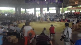 Чемпионат мира по Сумо 2015 г.Осака,Япония. (Sokolovskiy)
