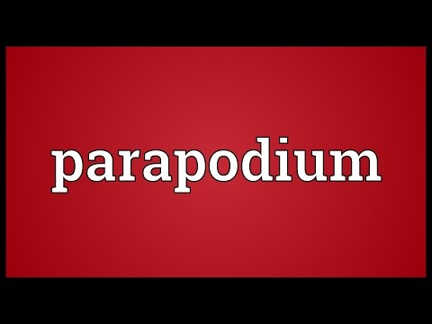 Header of parapodium