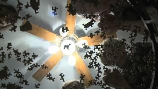 WICKER KITTENS   Official Trailer HD