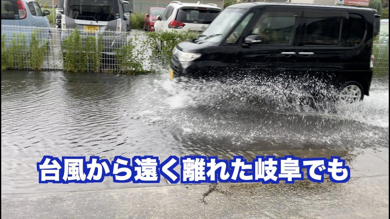 9月8日の大雨 グレートピレニーズ雨の中の過ごし方