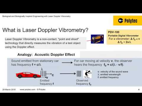 Biological and Biologically Inspired Engineering with Laser Vibrometry