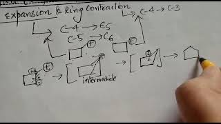 Class 12 ring expansion halo-alkines