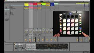 PreSonus ATOM and Ableton Live: Transport