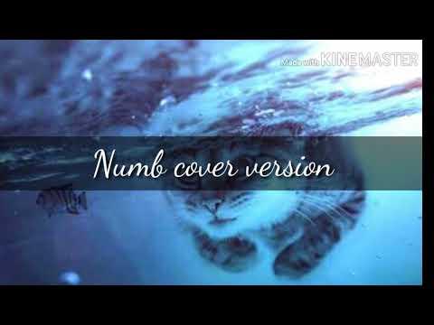 Numb cover versión español/Chavo Martínez