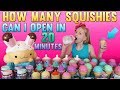 HUGE Squishy Toys Opening Challenge with My Brother