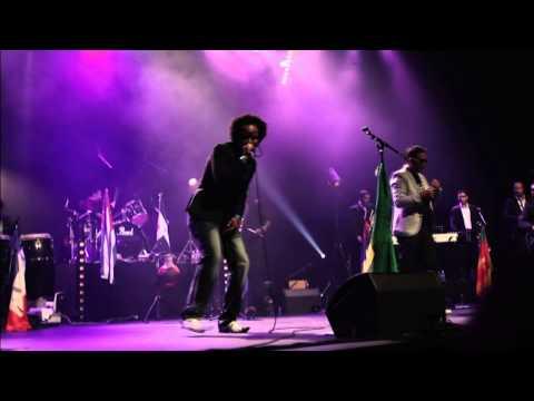 Salsa Ilegal - Despecho (Live)