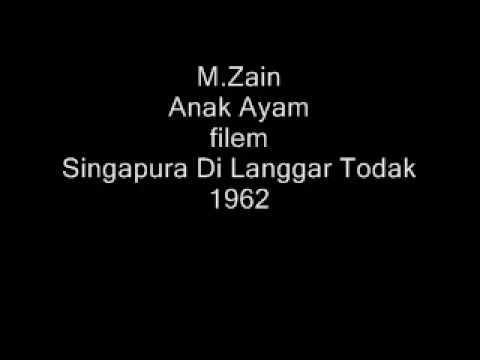 M.Zain - Anak Ayam