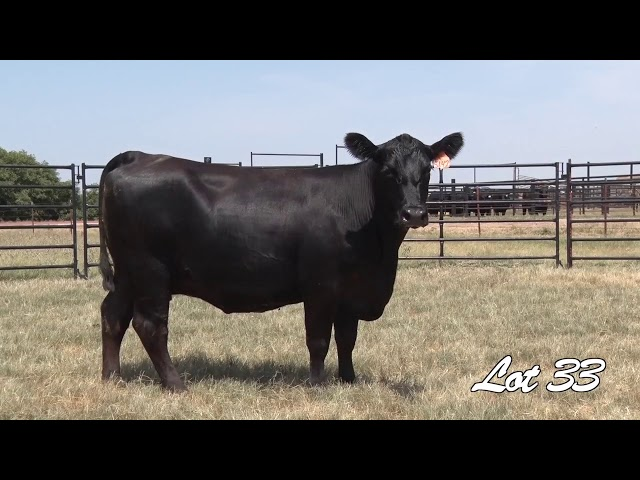 Pollard Farms Lot 33