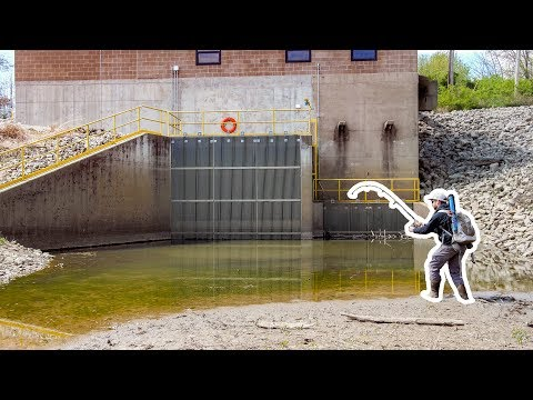 I DID NOT Want To Fish This Spillway... (GIANT NEW SPECIES!)