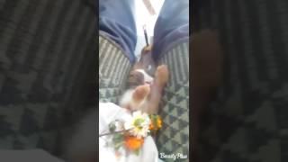 Rocksam Badsha dethanervaseri funny video