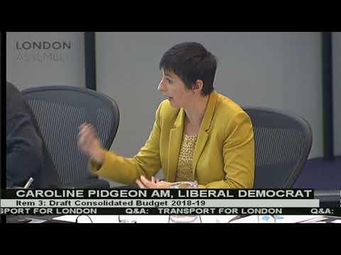 Caroline Pidgeon AM grills Mayor on his Draft Budget 2018