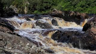 A Short Meditation in Nature-Sounds of Water Flowing-Birdsong-Relaxation-Johnnie Lawson