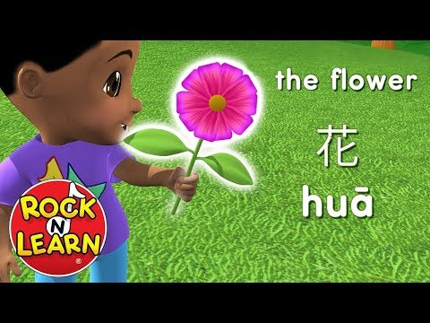 Learn Chinese for Kids - Food, Activities & Animals