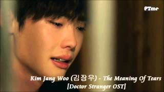 [Doctor Stranger OST] The Meaning Of Tears (slow instrumental)