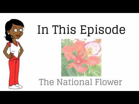 The National Flower