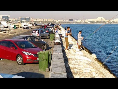 Bandar Fishing Spot