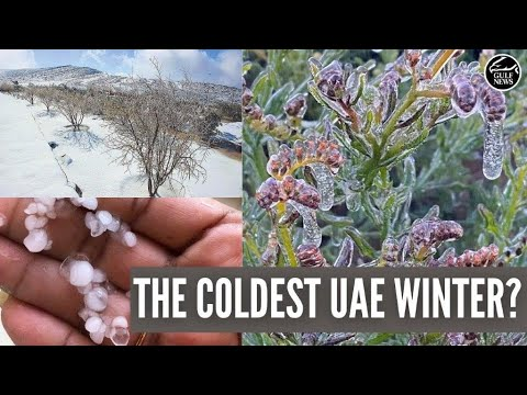 UAE Weather: Is this winter really the coldest one yet?
