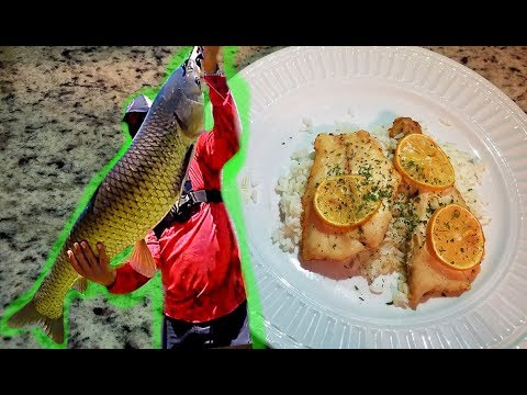 CARP Catch And Cook! Eating A CANAL WHALE! Will It Taste Good?!?