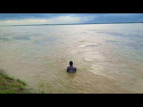 ভরা নদীতে সাতার দিয়ে খসসা আলা মাছ শিকার | Amazing Fishing Techniques | Village Fishing |Natural Fish