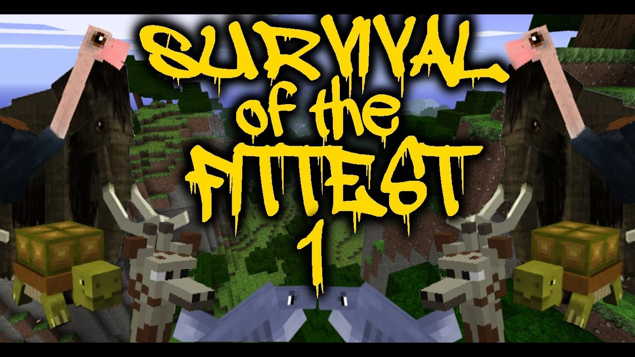 Iancoullahan1 survival of the fittest 17