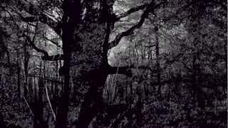 Koyaanisqatsi/Prophecies Philip Glass