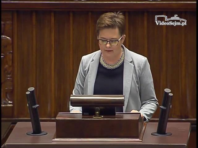 Katarzyna Lubnauer - wystąpienie z 19 lipca 2017 r.