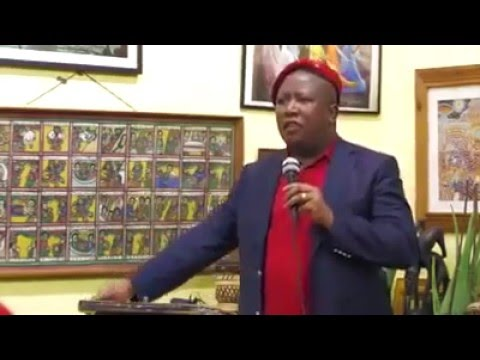 Julius Malema Doesn't Want China Colonising Africa