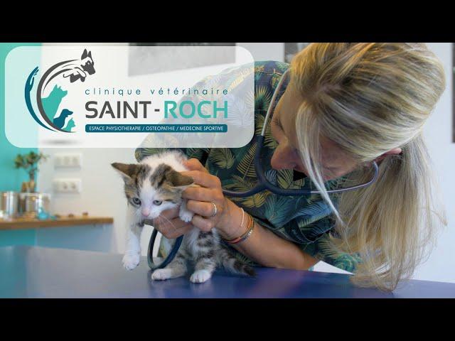 Best Of   Clinique vétérinaire Saint Roch