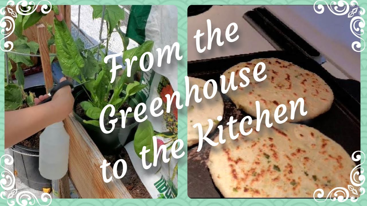 From the Greenhouse to the Kitchen