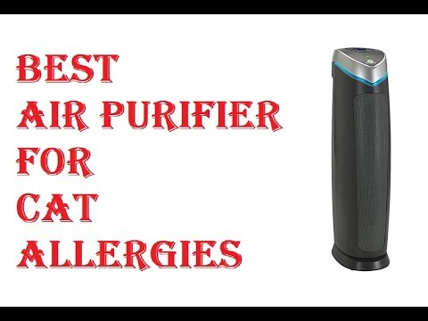 Best Air Purifier For Cat Allergies 2018