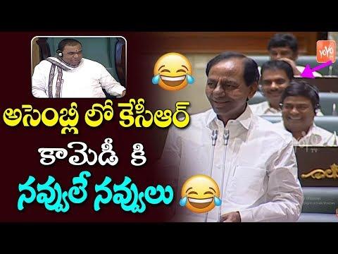 CM KCR Hilarious Fun On Errabelli Dayakar Rao In Telangana Assembly | Harish Rao | KTR | YOYO TV