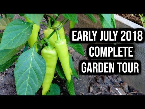 COMPLETE Vegetable Garden Update – July 10, 2018   LucasGrowsBest