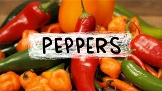 Peppers - Superfoods, Episode 4