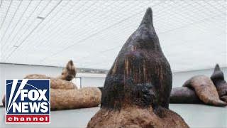 Art exhibit allows visitors to 39 walk through excrement 39